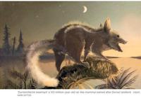 双语阅读:考古新发现人类的祖先是老鼠
