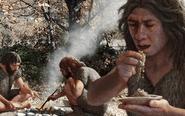 人类祖先当初为何要褪毛!