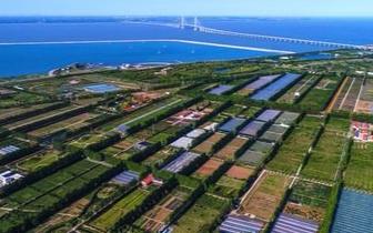 开州书记冉华章:加快建设成长江经济带的绿色典范