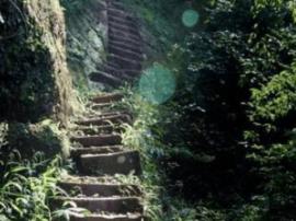 四面山: 或许是爱情,或许是亲情