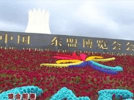 南宁会展中心数万株鲜花装点 迎接参展宾朋