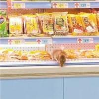 超市冷柜有老鼠