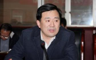 北碚书记周旭:努力打造一流政务公共服务平台