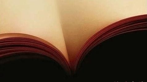 轻松一刻:不读书,屎壳郎都不会理你的!图片