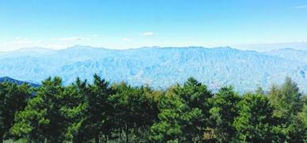 北京最大林场发现濒危褐马鸡的踪迹
