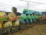 缸甏+农民画 宁波象山茅洋小城镇环境综合整治打民俗风情牌