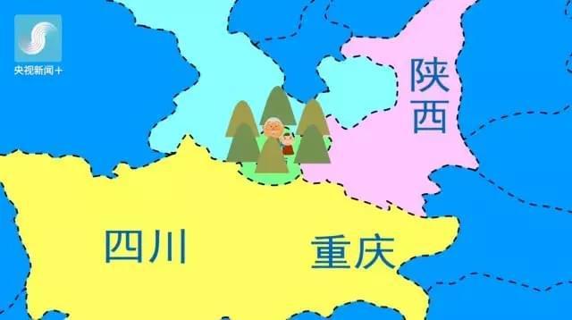 兰渝铁路将全线通车 运行时间由21小时缩至12小时