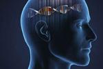脑癌发病率暴增?或与智能手机有关