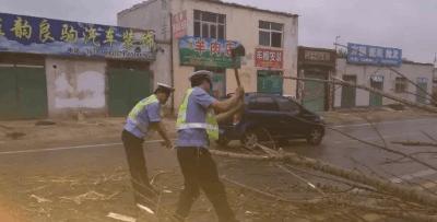 市区大树被吹倒影响通行 民警冒雨清理