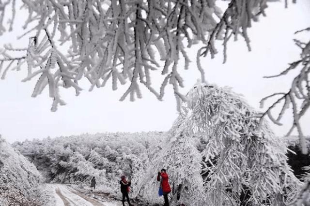 自驾游去重庆黔江看雪啦!