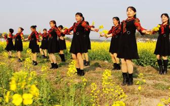 【旅游节特辑】金石万亩油菜花海 状元之乡等你来!