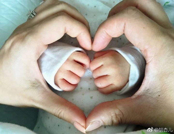 宣布诞下宝宝 胡杏儿独家回应:开始闭关喂人奶