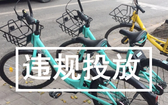 深圳突然出现青桔单车 滴滴被交委点名后回应了