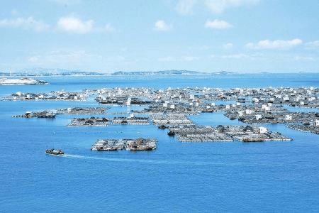 惠州开展海洋经济调查 涉及18个职能部门和单位
