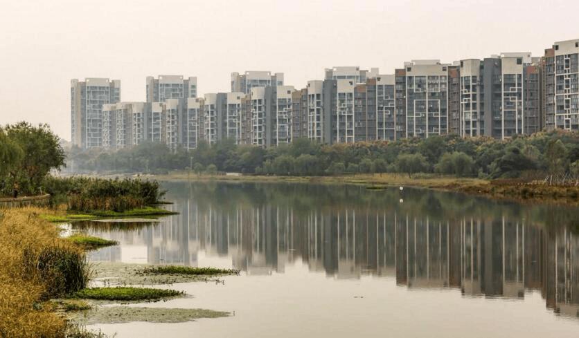 荆州大力加强湿地保护工作 促进人与自然和谐共处