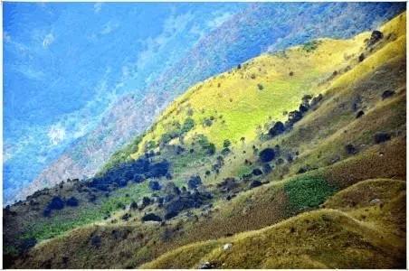惠东这几座山,你都爬过哪一座?