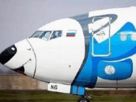 萌!俄一航空公司把自家飞机涂成了哈士奇