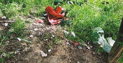 北二环一处公共绿地杂草疯长 堆满垃圾
