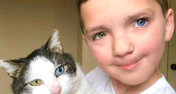 虹膜异色兔唇男孩 遇到命运相同的猫