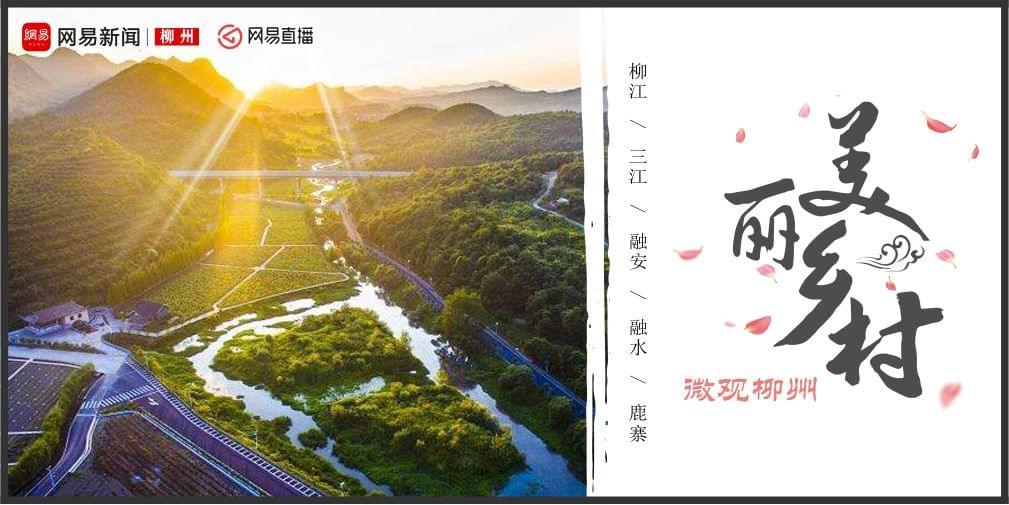 """微观柳州第四季之""""脱贫攻坚·美丽乡村行"""""""