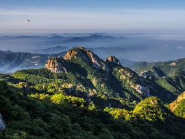 山东省的七个国家级自然保护区 你知道几个?