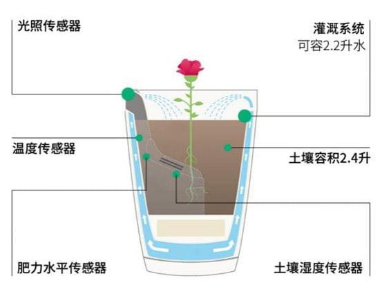 交友 养花没时间照顾它?你可以试试自动浇水智能花盆