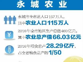 """永城从""""大粮仓""""""""大厨房""""到""""大餐桌""""的转型"""
