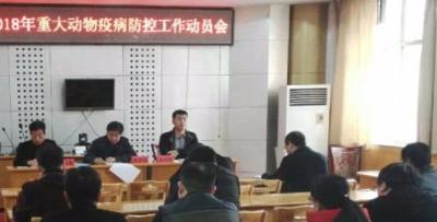 郑杰斌召开武强动物疫病防控工作动员会