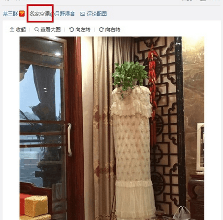每日轻松一刻:这家公司春节放假23天!图片