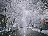 """又有冷空气影响宁波 惊蛰是否会""""从头另过冬""""?"""