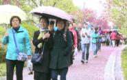 凤城河风景区:旅客文明为景点增色