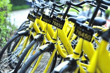 共享单车呼唤人人自律 共享文明