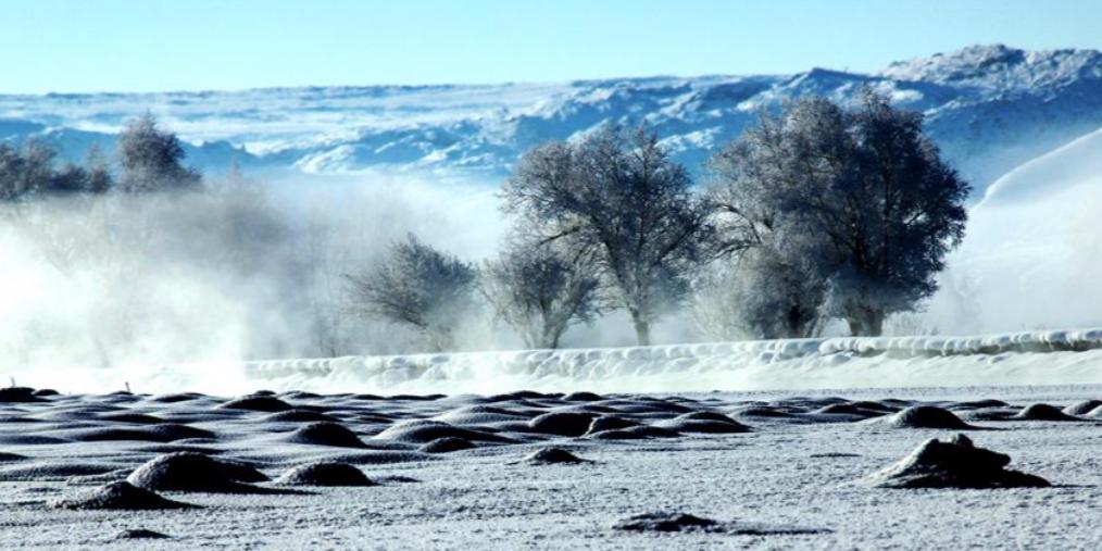 新疆布尔津县出现雾凇美景宛若仙境