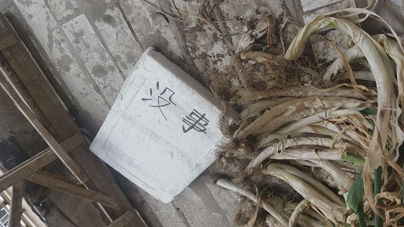 """被控制期间李梅曾在七楼房间阳台处举着这块板子 ,上面写着两个字""""没事""""。"""