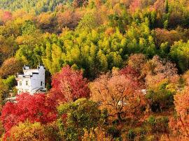 中国最美的四大秋色之一的地方 你去过了吗?