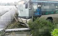 公交车与电三轮发生剐蹭 失控冲向农田