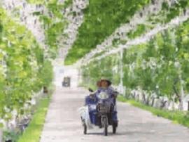 运城:瓜果飘香农博会 贸易签约达30亿元
