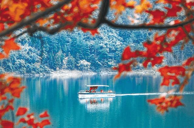 初冬时节黔江区小南海景区枫叶红透