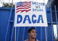 最新报告显示:美国最多360万梦想生等待合法身份