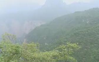 部分艺术家走进平顺县开展采风活动