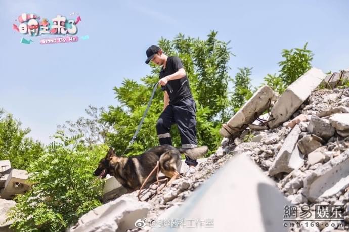 张继科为灾区祈祷 发搜救犬训练照引网友祈福