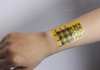 科学家发明可100%回收电子皮肤:不仅环保 还可自