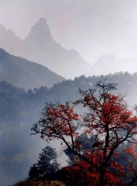 在皖南风景道自驾400里 穿越至2000年前盛世美景