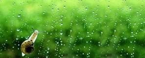 遇到梅雨季节 你家厨卫还好吗?