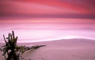 巴哈马有一个超梦幻的粉色沙滩!
