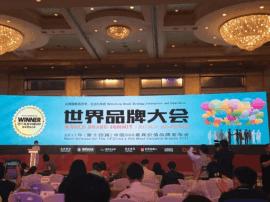 东顺集团顺清柔品牌价值92.85亿元 跻身中国品牌500强