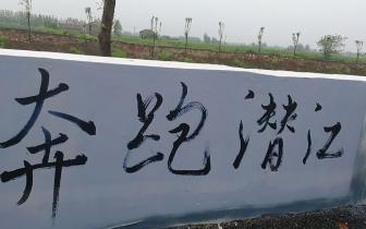 """观鸟墙绘!""""潜马""""最美赛道又添靓景"""