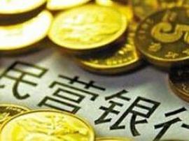余丰慧:应发展具有前瞻性的新金融业态民营银行