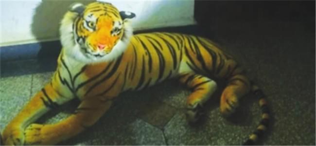 """小伙凌晨回家惊现""""老虎"""" 报警后发现是毛绒玩具"""