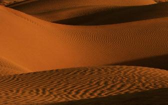 死亡之海的生命复苏——塔克拉玛干沙漠